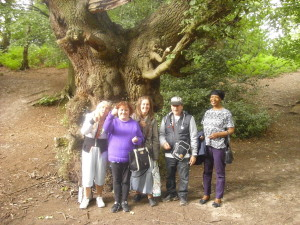 Nature walk to Moseley bog